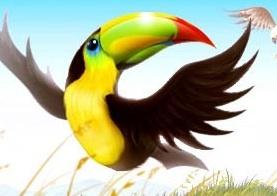 aviarytoucan.jpg