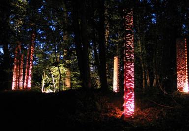 light-sculpture2.jpg