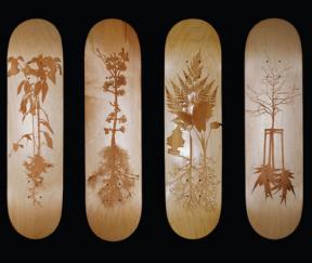 Piotr Woronkowicz skateboard decks