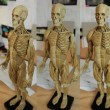 Images I shot for the 3d scan.