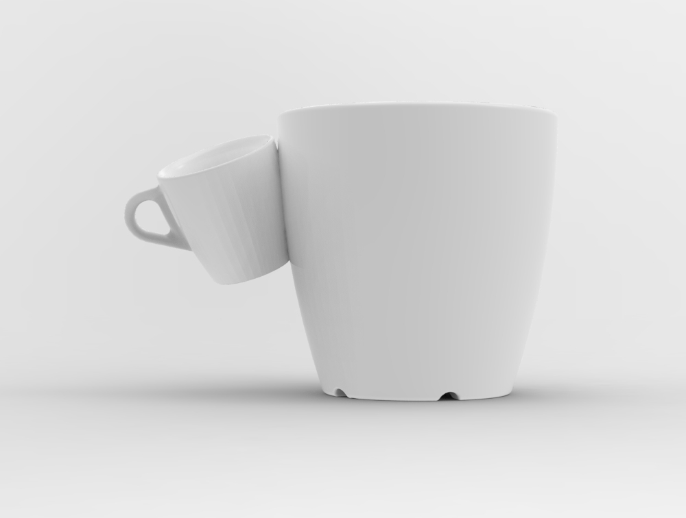 Day-21-Siamese-Cup