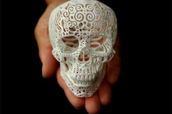 crania front