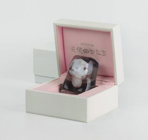 Fetus gift