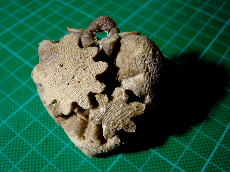 Gary Hodgson's wood composite print of mini heart gears