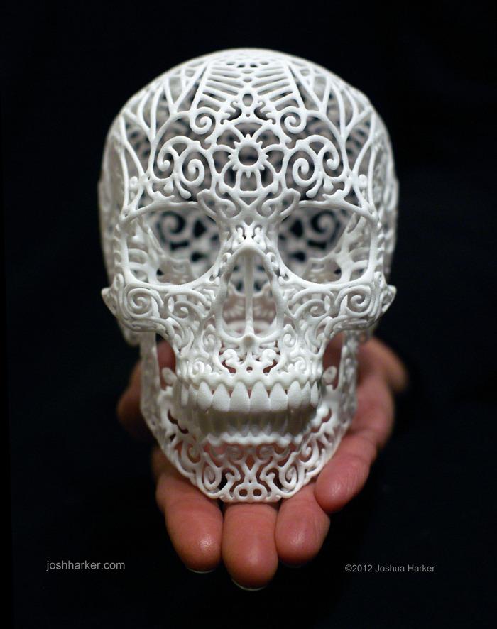 Anatomica di Revolutis - Skull