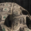 Scott Campbell Skull detail