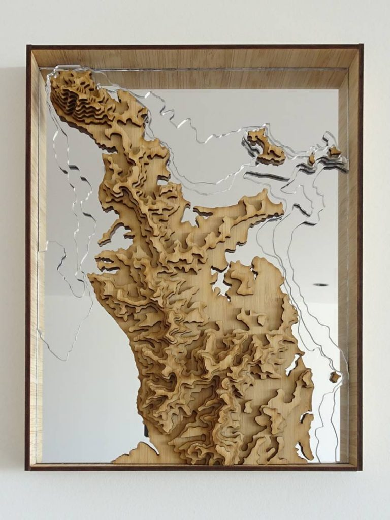 Antler And Pine 4 - NZ Map - Coromandel Peninsula