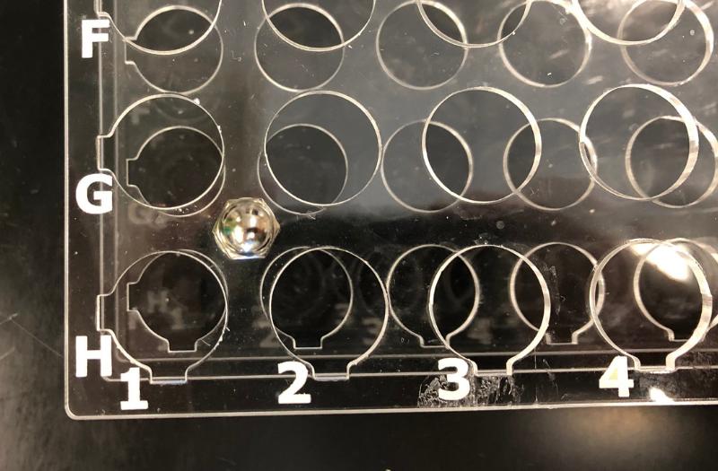 Laser Cut Test Tube Racks 6 - labeling